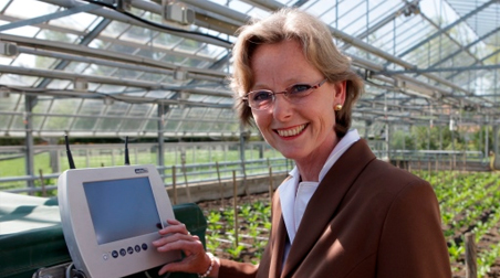 Sugar Beet Breeding Research